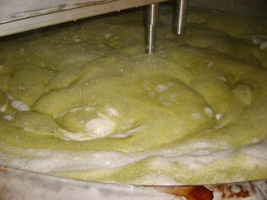 la monté de la mousse juste après l'ajout de houblons (ca a bien évidement débordé :)