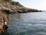 Mallorca-Joe4